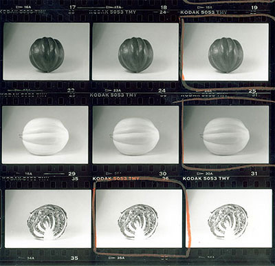 Stephen Wolfram Scrapbook. 1996: Photographing for the NKS book