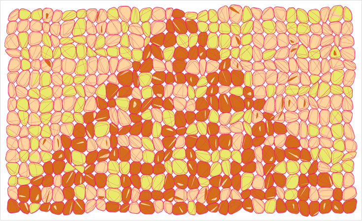 The life and times of Stephen Wolfram. 1997: Cellular automata as inspirational office art...