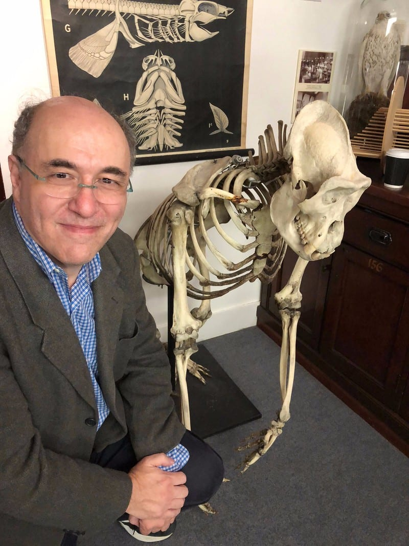 The life and times of Stephen Wolfram. 2017: Researching scientific history in the field...