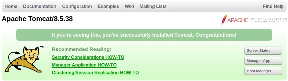 tomcat is running