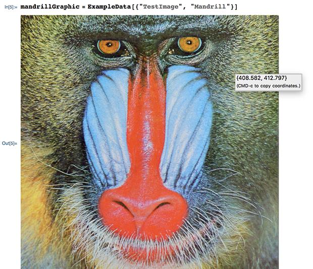 In[5]:= mandrillGraphic = ExampleData[{