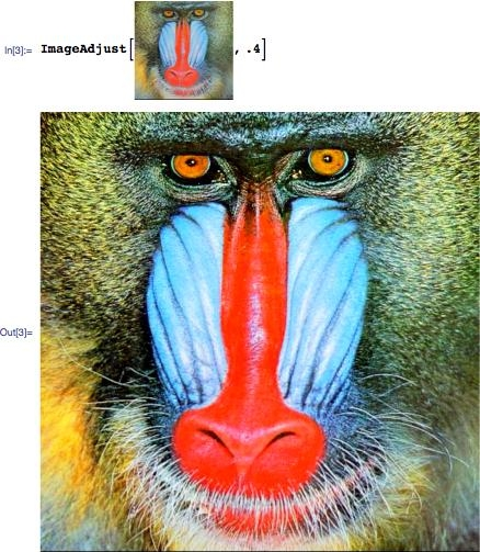 Image of an undersaturated mandrill, and a command to increase the contrast