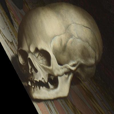 Transformed skull