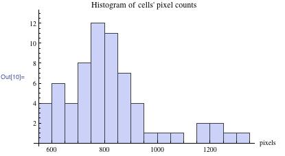 Histogram of cells' pixel counts