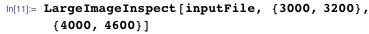 LargeImageInspect[inputFile, {3000, 3200}, {4000, 4600}]