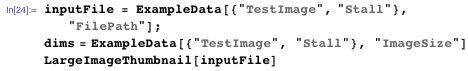 "inputFile = ExampleData[{""TestImage"", ""Stall""}, ""FilePath""]; dims = ExampleData[{""TestImage"", ""Stall""}, ""ImageSize""] LargeImageThumbnail[inputFile]"