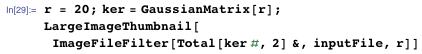 r = 20; ker = GaussianMatrix[r]; LargeImageThumbnail[ImageFileFilter[Total[ker #, 2] &, inputFile, r]]