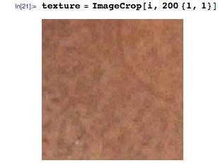 texture = ImageCrop[i, 200 {1, 1}]