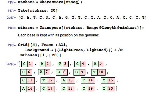 mtchars = Characters[mtseq];
