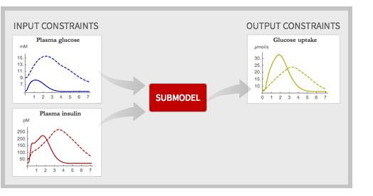 Input versus output constraints