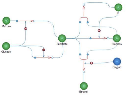 Model of bio ethanol process