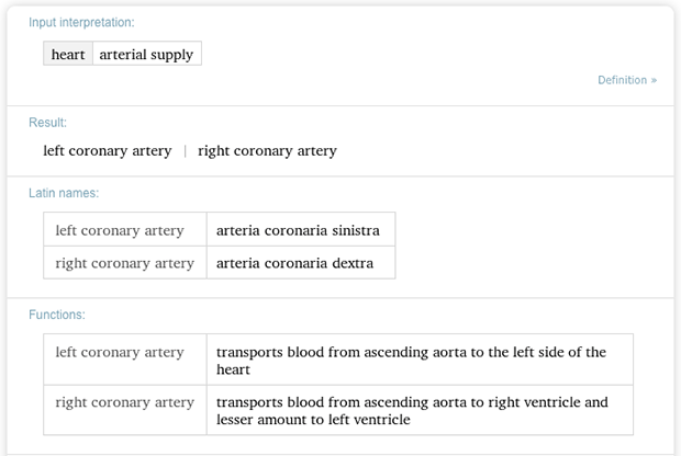 Arterial supplies of the heart