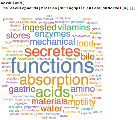 Describing digestive functions in a word cloud