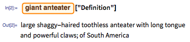 """In[2]:= giant anteater [""""Definition""""]"""