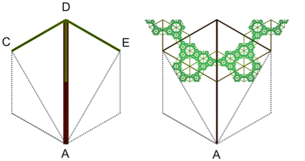 Hexagon second diagonal ternary tree