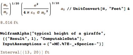 Typical height of a giraffe