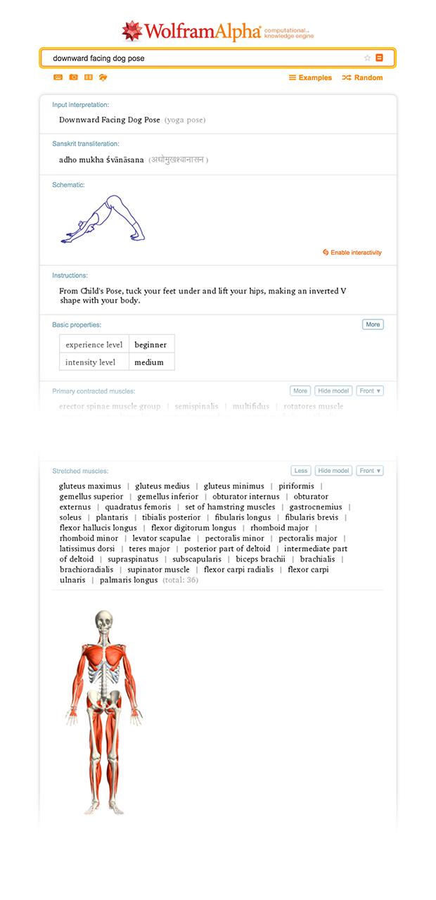 Information on the Downward Facing Dog Pose in Wolfram|Alpha