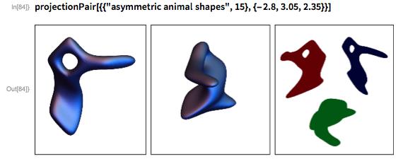"projectionPair[{{""asymmetric animal shapes"", 15}, {-2.8, 3.05, 2.35}}]"
