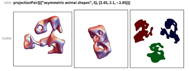 "projectionPair[{{""asymmetric animal shapes"", 5}, {2.65, 2.1, -2.85}}]"