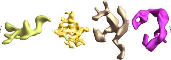 asymmetric animal shapes 2