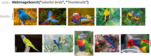 "WebImageSearch[""colorful birds"", ""Thumbnails""]"