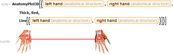 "AnatomyPlot3D[{Entity[""AnatomicalStructure"", ""LeftHand""],    Entity[""AnatomicalStructure"", ""RightHand""], Thick, Red,    Line[{Entity[""AnatomicalStructure"", ""LeftHand""],      Entity[""AnatomicalStructure"", ""RightHand""]}]}]"