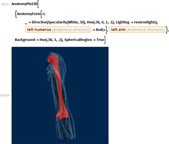 "AnatomyPlot3D[{AnatomyForm[<|_ ->       Directive[Specularity[White, 50], Hue[.58, 0, 1, .1],        Lighting -> reverselights],      Entity[""AnatomicalStructure"", ""LeftHumerus""] -> Red|>],    Entity[""AnatomicalStructure"", ""LeftArm""]},   Background -> Hue[.58, 1, .3], SphericalRegion -> True]"