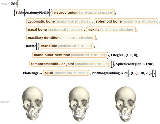 "Grid[{Table[    AnatomyPlot3D[{Entity[""AnatomicalStructure"", ""Neurocranium""],       Entity[""AnatomicalStructure"", ""ZygomaticBone""],       Entity[""AnatomicalStructure"", ""SphenoidBone""],       Entity[""AnatomicalStructure"", ""NasalBone""],       Entity[""AnatomicalStructure"", ""Maxilla""],       Entity[""AnatomicalStructure"", ""MaxillaryDentition""],       Rotate[{Entity[""AnatomicalStructure"", ""Mandible""],         Entity[""AnatomicalStructure"", ""MandibularDentition""]},        t Degree, {1, 0, 0},        Entity[""AnatomicalStructure"", ""TemporomandibularJoint""]]},      SphericalRegion -> True,      PlotRange -> Entity[""AnatomicalStructure"", ""Skull""],      PlotRangePadding -> 20], {t, {0, 10, 20}}]}]"