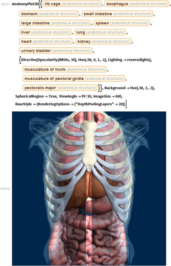 """AnatomyPlot3D[{Entity[""""AnatomicalStructure"""", """"RibCage""""],    Entity[""""AnatomicalStructure"""", """"Esophagus""""],    Entity[""""AnatomicalStructure"""", """"Stomach""""],    Entity[""""AnatomicalStructure"""", """"SmallIntestine""""],    Entity[""""AnatomicalStructure"""", """"LargeIntestine""""],    Entity[""""AnatomicalStructure"""", """"Spleen""""],    Entity[""""AnatomicalStructure"""", """"Liver""""],    Entity[""""AnatomicalStructure"""", """"Lung""""],    Entity[""""AnatomicalStructure"""", """"Heart""""],    Entity[""""AnatomicalStructure"""", """"Kidney""""],    Entity[""""AnatomicalStructure"""",     """"UrinaryBladder""""], {Directive[Specularity[White, 50],      Hue[.58, 0, 1, .1], Lighting -> reverselights],     Entity[""""AnatomicalStructure"""", """"MusculatureOfTrunk""""],     Entity[""""AnatomicalStructure"""", """"MusculatureOfPectoralGirdle""""],     Entity[""""AnatomicalStructure"""", """"PectoralisMajor""""]}},   Background -> Hue[.58, 1, .3], SphericalRegion -> True,   ViewAngle -> Pi/10, ImageSize -> 600,   BaseStyle -> {RenderingOptions -> {""""DepthPeelingLayers"""" -> 20}}]"""
