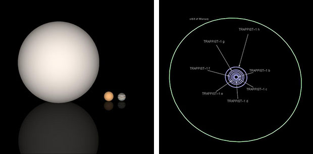 Sun, TRAPPIST, Jupiter and Mercury with exoplanet orbit