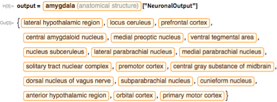 """output = Entity[""""AnatomicalStructure"""", """"Amygdala""""][""""NeuronalOutput""""]"""