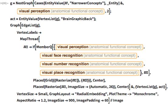 "g = NestGraph[Cases[EntityValue[#, ""NarrowerConcepts""], _Entity] &, Entity[""AnatomicalFunctionalConcept"", ""VisualPerception""], 2]; act = EntityValue[VertexList[g], ""BrainGraphicBack""]; Graph[EdgeList[g], VertexLabels -> MapThread[#1 -> If[MemberQ[{Entity[""AnatomicalFunctionalConcept"", ""VisualPerception""], Entity[""AnatomicalFunctionalConcept"", ""VisualFaceRecognition""], Entity[""AnatomicalFunctionalConcept"", ""VisualNumberRecognition""], Entity[""AnatomicalFunctionalConcept"", ""VisualPlaceRecognition""]}, #1], Placed[Grid[{{Rasterize[#1]}, {#2}}], Center], Placed[Rasterize[#1, ImageSize -> {Automatic, 26}], Center]] &, {VertexList[g], act}], VertexSize -> Small, GraphLayout -> ""RadialEmbedding"", PlotTheme -> ""Monochrome"", AspectRatio -> 1.2, ImageSize -> 900, ImagePadding -> 60] // Image"