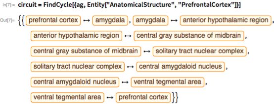"circuit =   FindCycle[{ag, Entity[""AnatomicalStructure"", ""PrefrontalCortex""]}]"
