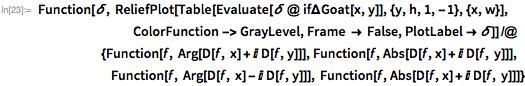 Function[\[Delta],    ReliefPlot[    Table[Evaluate[\[Delta] @ if\[CapitalDelta]Goat[x, y]], {y, h,       1, -1}, {x, w}],                             ColorFunction -> GrayLevel,     Frame -> False, PlotLabel -> \[Delta]]] /@                        {Function[f, Arg[D[f, x] + I D[f, y]]],    Function[f, Abs[D[f, x] + I D[f, y]]],                        Function[f, Arg[D[f, x] - I D[f, y]]],    Function[f, Abs[D[f, x] + I D[f, y]]]}