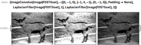 {ImageConvolve[   Image[FDSTGoat], -{{0, -1, 0}, {-1, 4, -1}, {0, -1, 0}},    Padding -> None],   LaplacianFilter[Image[FDSTGoat], 1],   LaplacianFilter[Image[FDSTGoat], 2]}