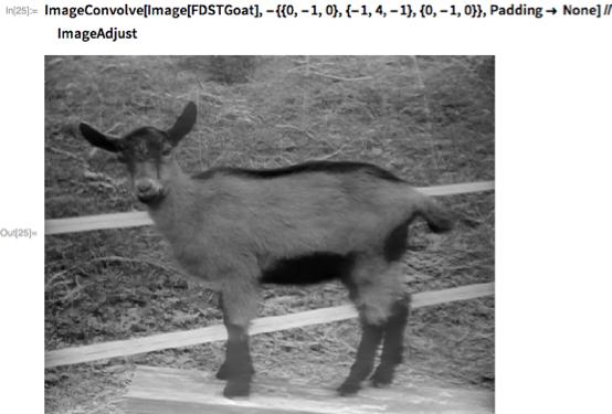 ImageConvolve[Image[FDSTGoat], -{{0, -1, 0}, {-1, 4, -1}, {0, -1, 0}},    Padding -> None] // ImageAdjust