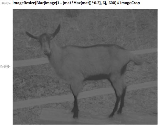 ImageResize[Blur[Image[1 - (mat/Max[mat])^0.3], 6], 600] // ImageCrop