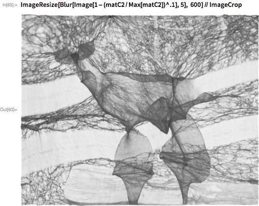 ImageResize[Blur[Image[1 - (matC2/Max[matC2])^.1], 5],    600] // ImageCrop