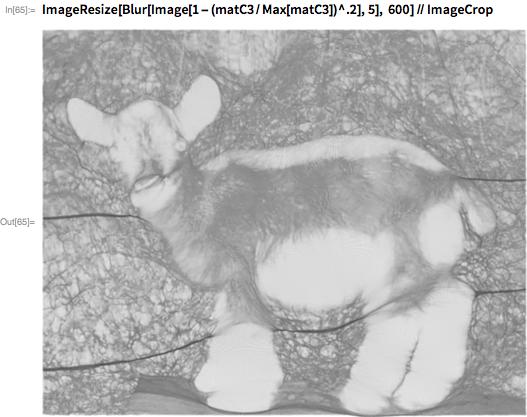 ImageResize[Blur[Image[1 - (matC3/Max[matC3])^.2], 5],    600] // ImageCrop