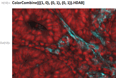 ColorCombine[{{1, 0}, {0, 1}, {0, 1}}.HDAB]
