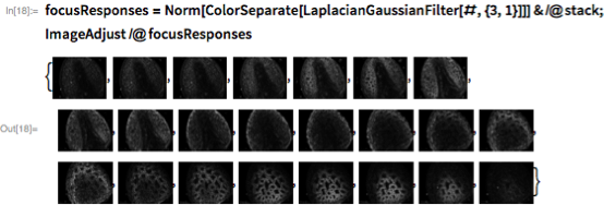 focusResponses =    Norm[ColorSeparate[LaplacianGaussianFilter[#, {3, 1}]]] & /@ stack; ImageAdjust /@ focusResponses