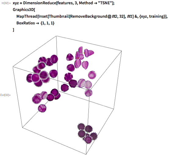 "xyz = DimensionReduce[features, 3, Method -> ""TSNE""]; Graphics3D[  MapThread[   Inset[Thumbnail[RemoveBackground@#2, 32], #1] &, {xyz, training}],  BoxRatios -> {1, 1, 1}  ]"