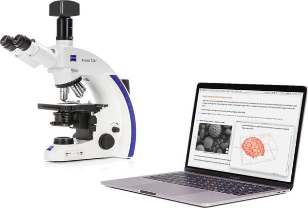 Microanalysis tools