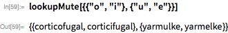 """lookupMute[{{""""o"""", """"i""""}, {""""u"""", """"e""""}}]"""