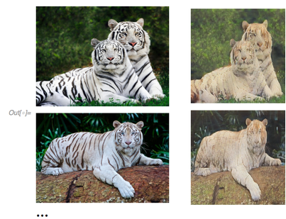 Changing Tigers' Stripes