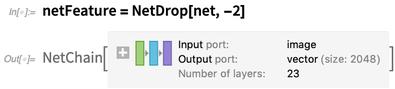 netFeature = NetDrop[net, -2]