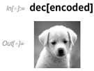 dec[encoded]