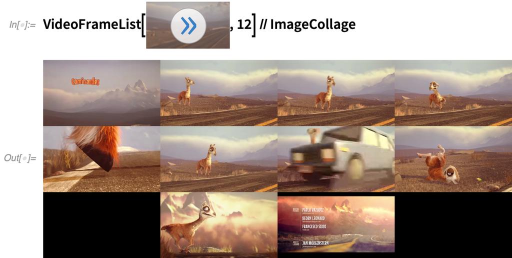 VideoFrameList