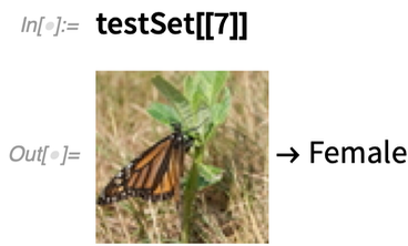 testSet