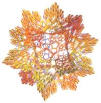 Kepler's fractal faces